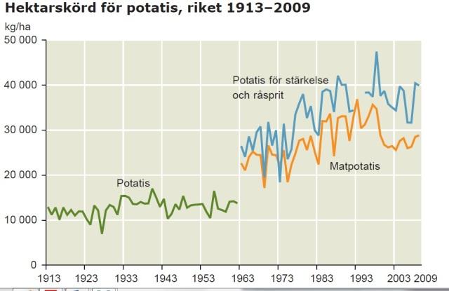 hektskörd potatis