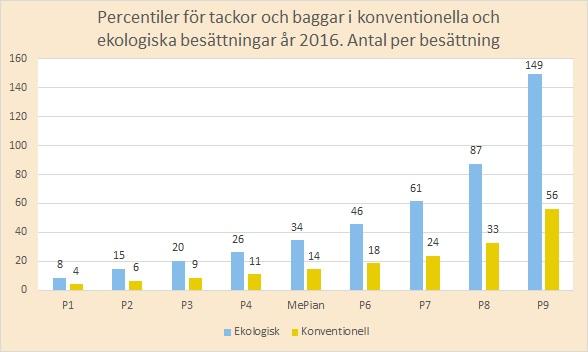 percentil tackor