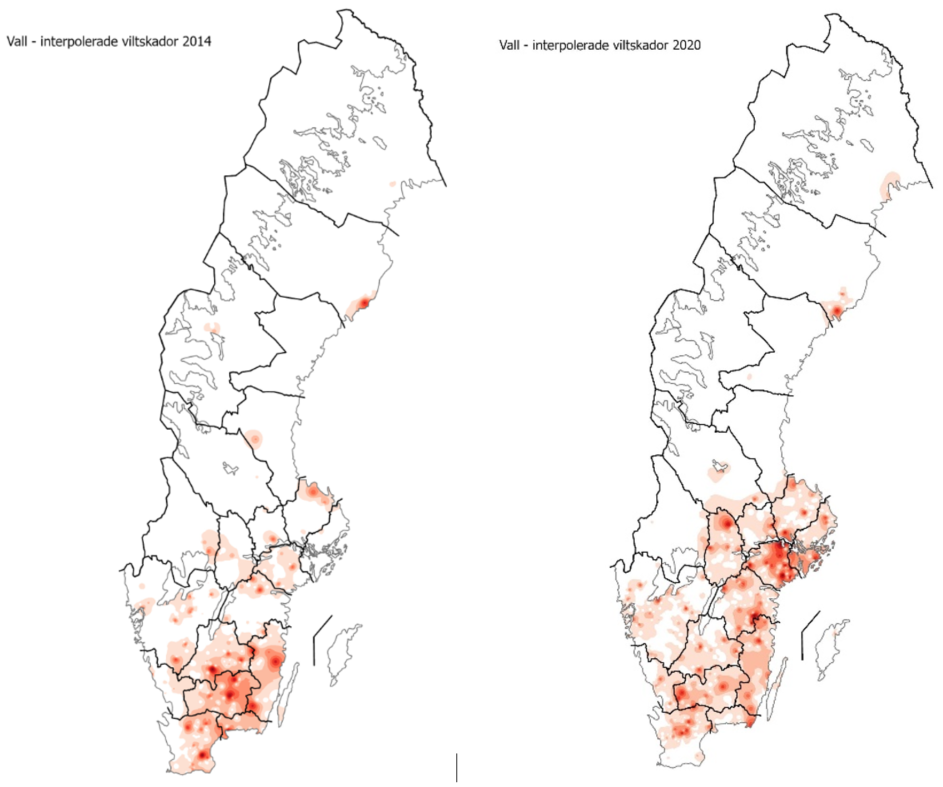 Områden med högt skördebortfall år 2014 då främst Skogsbygderna i Södr Sverige drabbats jämfört med 2020 då också områden mellan Örebro och Stockholm drabbats.